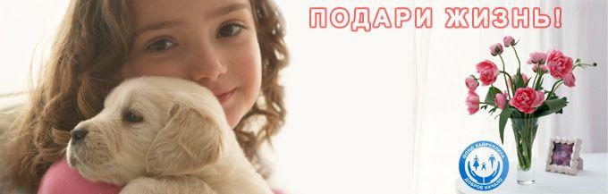 Благотворительный фонд, благотворительная акция, Подари жизнь